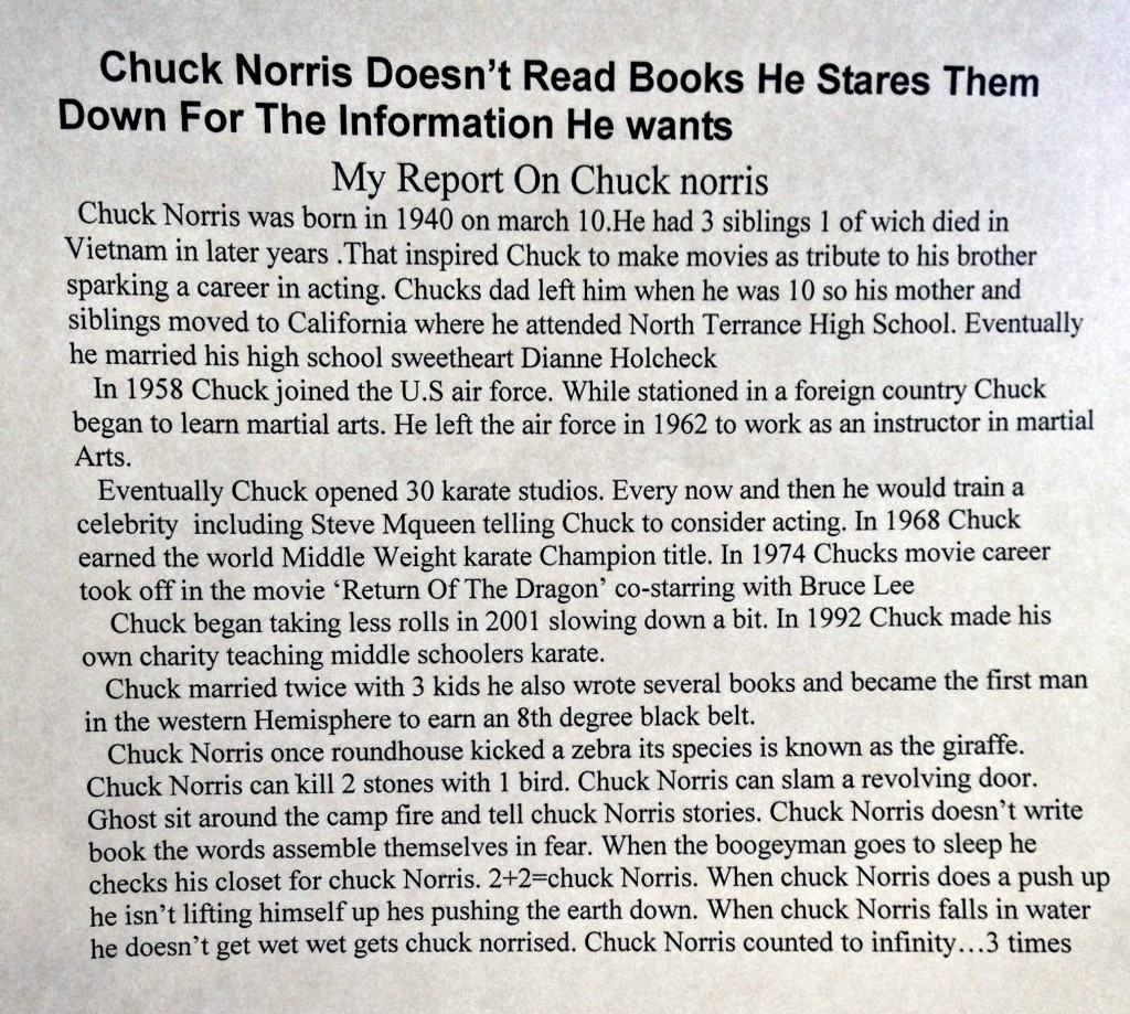 chuck norris book report